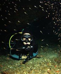 Shore Dive - Night Dive 1 Tank