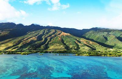 Amazing Hawaiian Fish Ponds