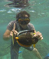 Reserve a trip to go Spearfishing with Lopaka's Aloha Adventures.