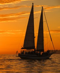 Sunset Sails & Cruises