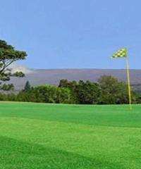 Reserve a round of golf at the Volcano Golf Course.