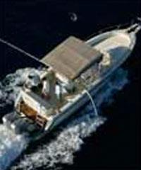 36' Power Boat, 36' Powerboat (Private Charters)