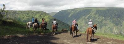 Travel Blog #159 - Horseback Riding on the Waipio Valley Rim Trail