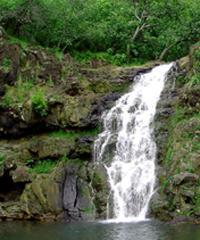# 3  Circle & Waimea Waterfall